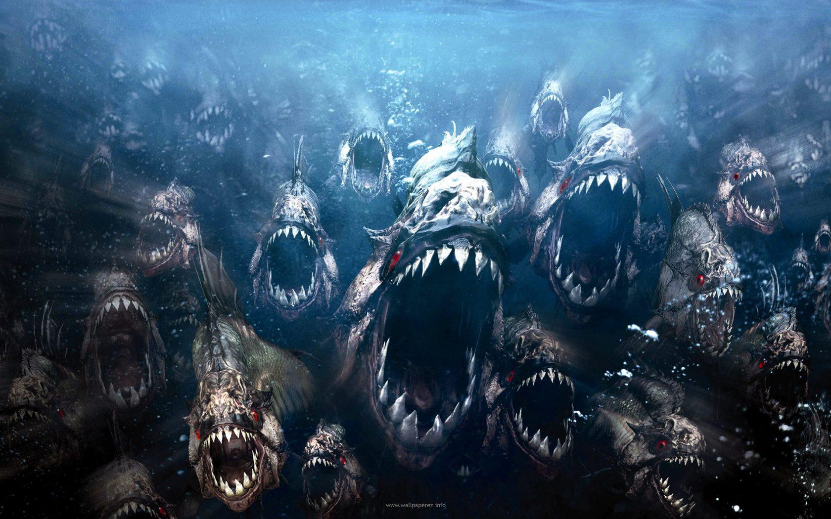 piranha-3dd