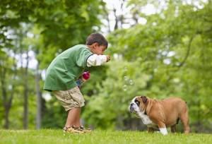 cane-e-bambini-300x204