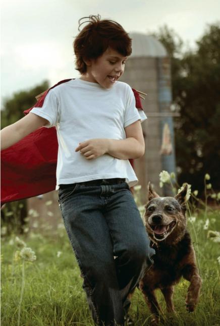 supermanjuniornovel5