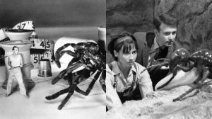the-incredible-shrinking-man-1957-_166791-fli_1407852680