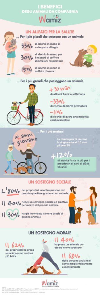 infografica versione desktop