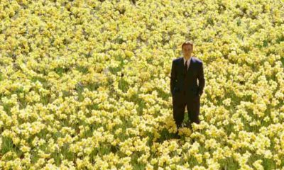 big fish newscinema