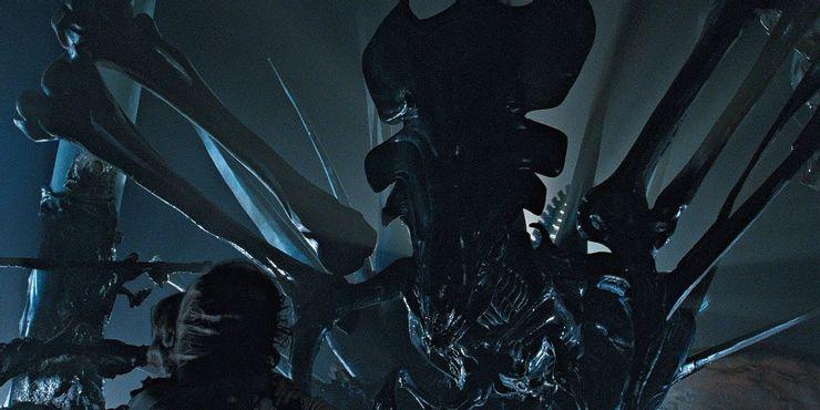 the queen in aliens